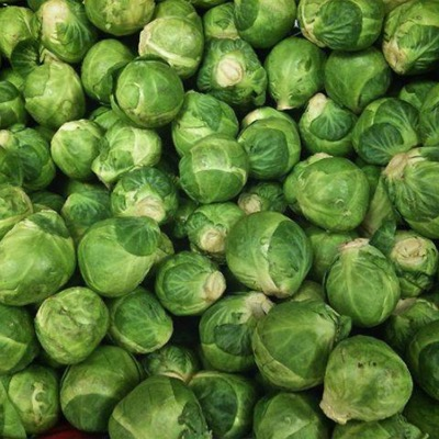 Brussels Sprout Brest F.1 Hybrid Seeds. Mid Season Type